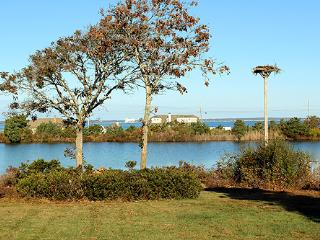 1225 - VINTAGE 1950'S HOME LOCATED ON CRYSTAL LAKE IN OAK BLUFFS - Edgartown vacation rentals