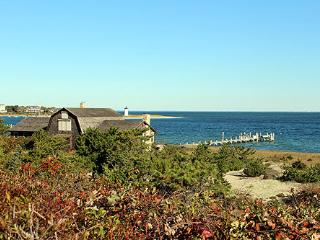 1330 - CLASSIC VICTORIAN WITH BEACH & SPECTACULAR VIEWS OF EDGARTOWN HARBOR - Edgartown vacation rentals