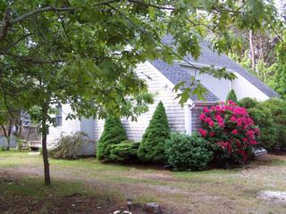 1491 - REVERSE CONTEMPORARY WITH A LOVELY DECK - Edgartown vacation rentals