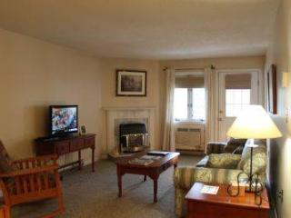 Spacious 1BR condo with balcony, fireplace 235C - White Mountains vacation rentals
