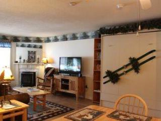 Convenient 1BR condo, access to fitness center - C1 136C - Lincoln vacation rentals