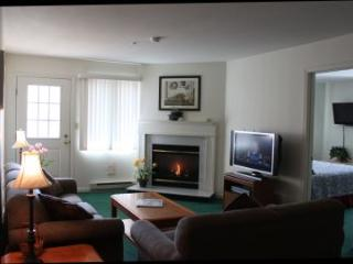 Luxurious 2BR condo with balcony, fireplace - A2 202A - White Mountains vacation rentals