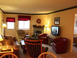Spacious 1BR condo with Queen bed, fireplace - B1 124B - Lincoln vacation rentals
