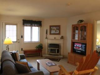 2BR condo with Queen beds, TV/VCR - B1 119B - White Mountains vacation rentals
