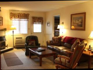Convenient 2BR condo with fireplace, TV/DVD - B1 126B - Lincoln vacation rentals