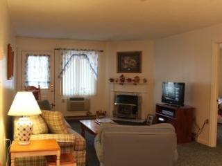 2BR condo with fireplace, walk-in closets - B2 214B - Lincoln vacation rentals