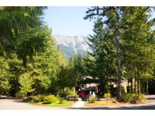 #28 - Cozy Snowater Condo by Mt. Baker - North Cascades Area vacation rentals