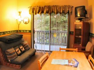 #33 - Economical Studio Condo near Mt. Baker! - Glacier vacation rentals