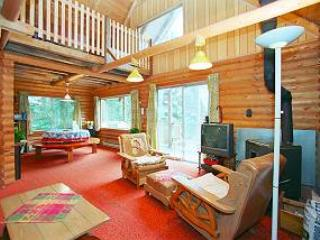 Mt. Baker Rim Rustic Cabin with Charm! #45 - Glacier vacation rentals