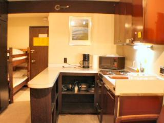 Mt. Baker Economical Condo for Skiing and Hiking! - Glacier vacation rentals