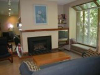 #52 - Cheerful 1-BR Condo near Mt. Baker! - Glacier vacation rentals