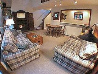 #57 - Large Snowater Condo Near Mt. Baker - Glacier vacation rentals