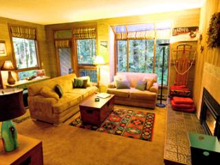 #84 - Lovely Snowater Condo near Mt. Baker - Glacier vacation rentals