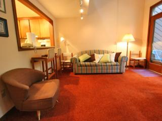 Lovely Snowater Condo near Mt. Baker - #85 - Glacier vacation rentals