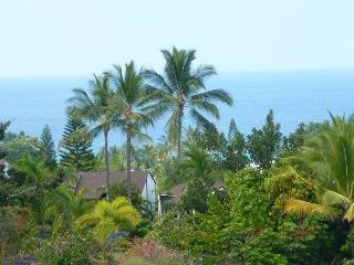 #CCV 241 - Country Club Villas #241 - Kona Coast vacation rentals