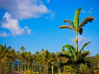 SA $219/nt Top Floor Mountain View 3 beds CALL NOW - Kapaa vacation rentals