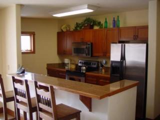 206 Oro Grande - North Keystone - Keystone vacation rentals