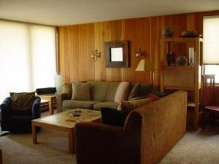 2149 The Pines - West Keystone - Keystone vacation rentals