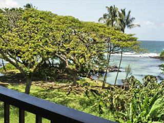 Enjoy All of Hilo Town at Maunaloa Shores (MLS306) - Hilo District vacation rentals