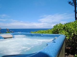Seasonal Whale Alert! Oceanfront Mele Kohola - Big Island Hawaii vacation rentals