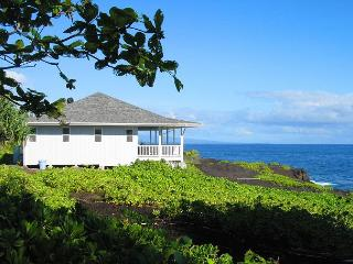 Wheelchair Friendly Oceanfront Home (Hale Ehu Kai) - Pahoa vacation rentals