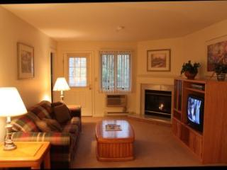 1BR condo with TV/DVD/VCR and King bed - A2 203A - Lincoln vacation rentals