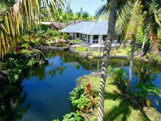 Ideal for Two Couples Traveling Together (WhtOrc) - Puna District vacation rentals