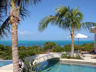 Snorkel right outside your front door on Smith's Reef, or just walk for miles on the sugar- white sandy beach. TNC AVA - Grace Bay vacation rentals
