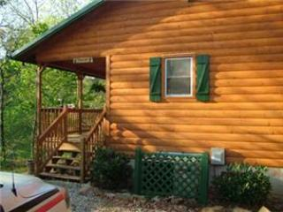 Time Out Cabin - Bryson City vacation rentals