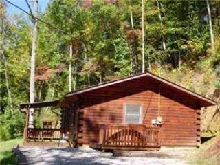 Deer Ridge Cabin - Bryson City vacation rentals