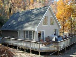 Birds Nest - Image 1 - Bryson City - rentals