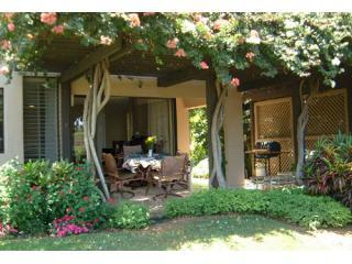 Ekahi 20A  Ground Floor Ocean view Lower Village - Wailea vacation rentals