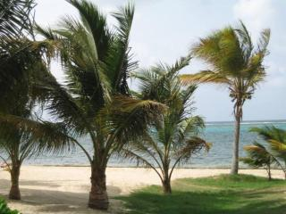 Blue Tranquility at Sugar Beach, St Croix - Christiansted vacation rentals