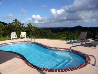 #1 Rated Rental in PR! Coquis Hideaway @ El Yunque - El Yunque National Forest Area vacation rentals