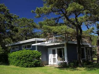 Surf King Cottage at Surf Side - Roof-top Deck - South Wellfleet vacation rentals