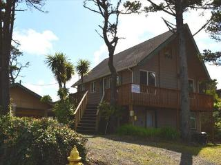 SAND & SURF - Manzanita vacation rentals