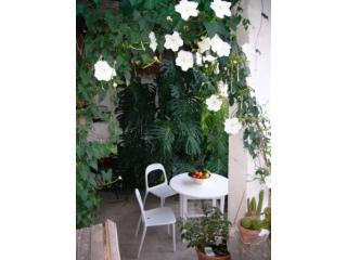 Moonflower arch  - Family friendly Andalusian cottage with garden - Cutar - rentals