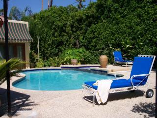 Private backyard pool for your enjoyment. - Moroccan Inspired Villa in Palm Springs - Palm Springs - rentals