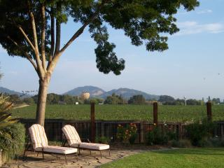 NAPA VALLEY 4 BED 3 BATH VINEYARD VIEW - Napa vacation rentals