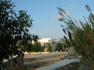 Mykonos Greece  Island Vacation Villa - Ano Mera vacation rentals