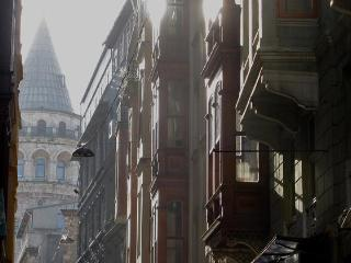 full of character with original frescoes in Galata - Istanbul vacation rentals