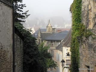 Sarlat Town looking from the end of Rue Landry - Residence Reygate - Sarlat-La-Caneda - rentals