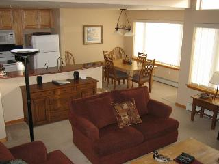 #532 E Watch Hill - Silverthorne vacation rentals