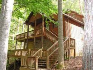 Emma's Brook - Bryson City vacation rentals