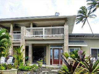 Sea View Hale - Newly Remodeled Kapoho Oceanview - Kapoho vacation rentals
