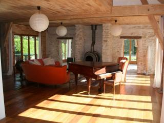 Pamoja, 2 lovely houses by a lake for 14 & 16 pers - Chemille Sur Indrois vacation rentals
