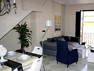 CENTRE SEVILLE Luxury 3 BED Apartment FREE WIFI - Seville vacation rentals