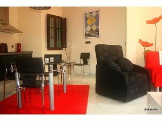 Apartment Sevilla Living Area. - Stylish New 2 Bed Apart. Centre Seville. FREE WIFI - Seville - rentals