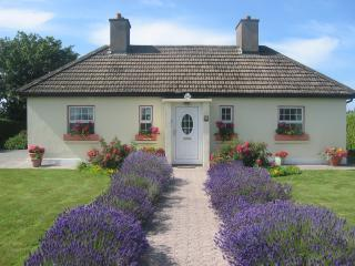 Yellow Shell Cottage Self Catering - County Waterford vacation rentals