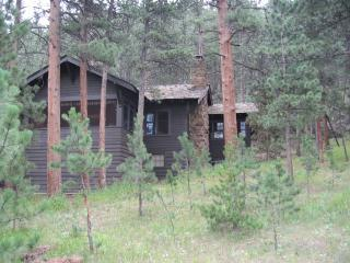 Secluded, views, near river - Whispering Pines-Views, privacy, close to river - Estes Park - rentals